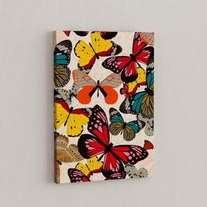 Obraz Motylki , 50x70 cm