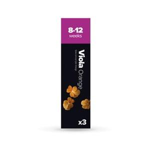 Zestaw 3   kapsułek z ziarenkami kwiatów Plantui Viola Orange