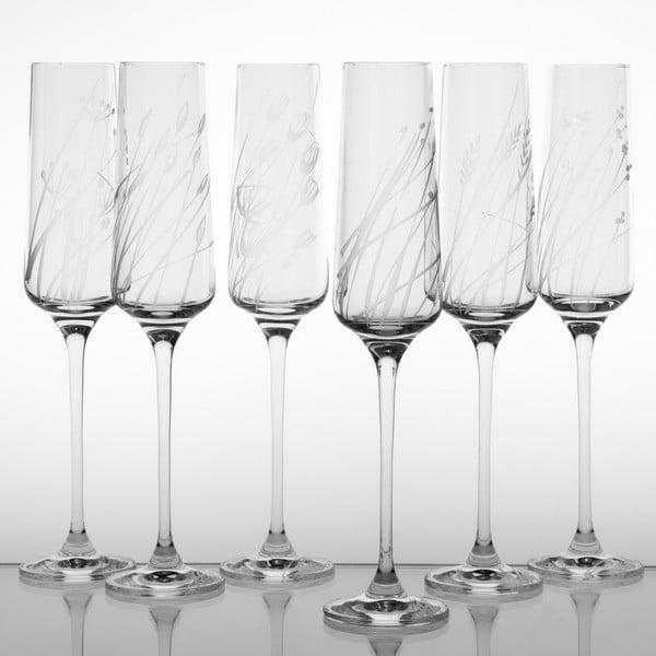Zestaw 6 kieliszków do szampana Wielicha na górze