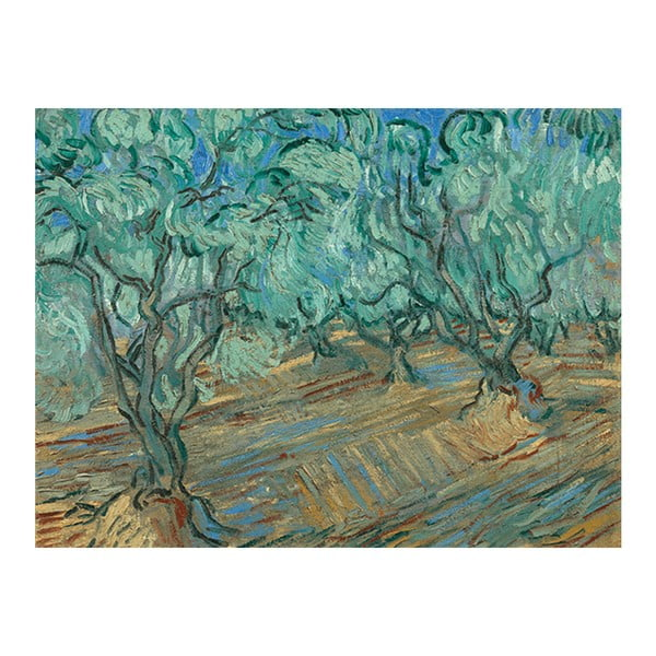 Obraz Vincenta van Gogha - Olive Grove, 80x50 cm