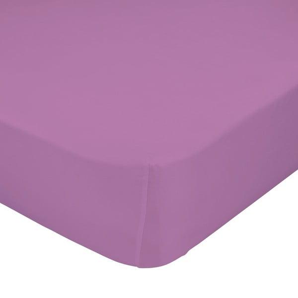 Fioletowe prześcieradło elastyczne Happynois, 60x120 cm
