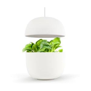 Biały inteligentny ogródek domowy Plantui 3 Smart Garden White