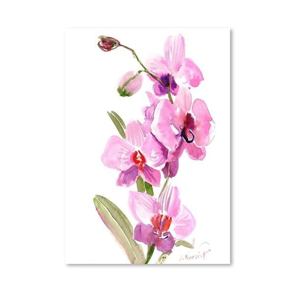 Plakat Pink Orchids (projekt Suren Nersisyan)