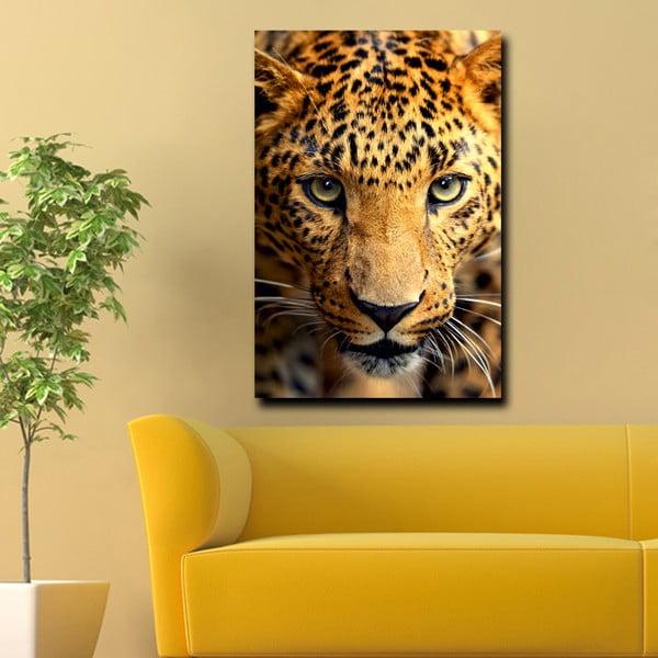 Obraz Ready, 45x70 cm