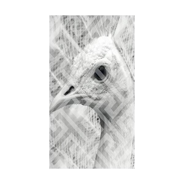 Tapeta Leon, 48x300 cm