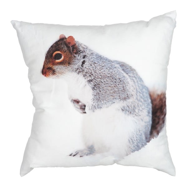 Poduszka Squirrel White, 45x45 cm