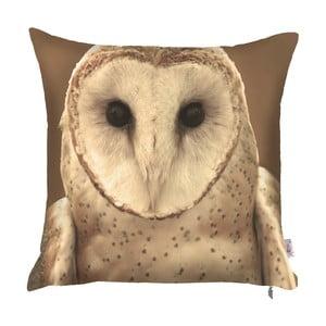 Poszewka na poduszkę Apolena Owl, 43x43 cm