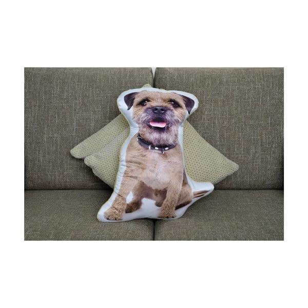 Poduszeczka Adorable Cushions Border teriér