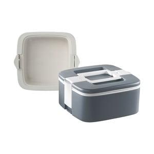 Szary termoreaktywny pojemnik na obiad Enjoy, 0,75 l