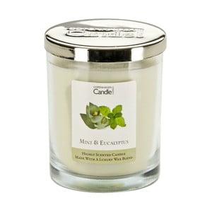 Świeczka zapachowa Mint & Eucaliptus, czas palenia 40 godzin