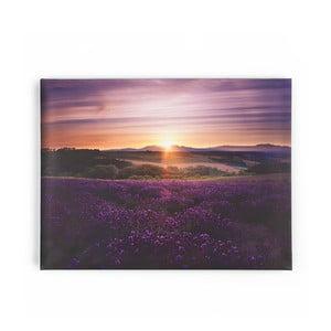 Obraz Graham & Brown Lavendar Sunset,80x60cm