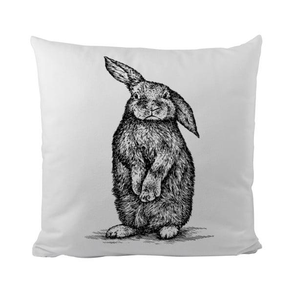 Poduszka   Little Rabbit, 50x50 cm
