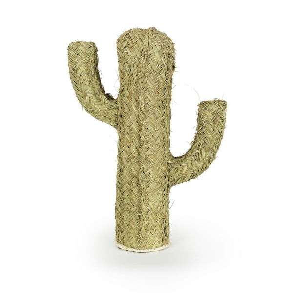 Dekoracja Cactus Esparto