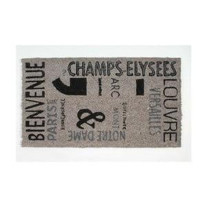 Wycieraczka Champ Elysees, 40x70 cm
