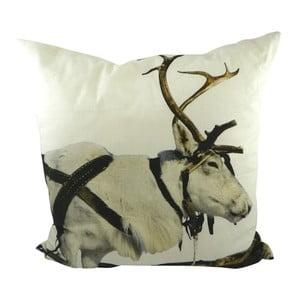 Poduszka Sepia Reindeer Working 50x50 cm