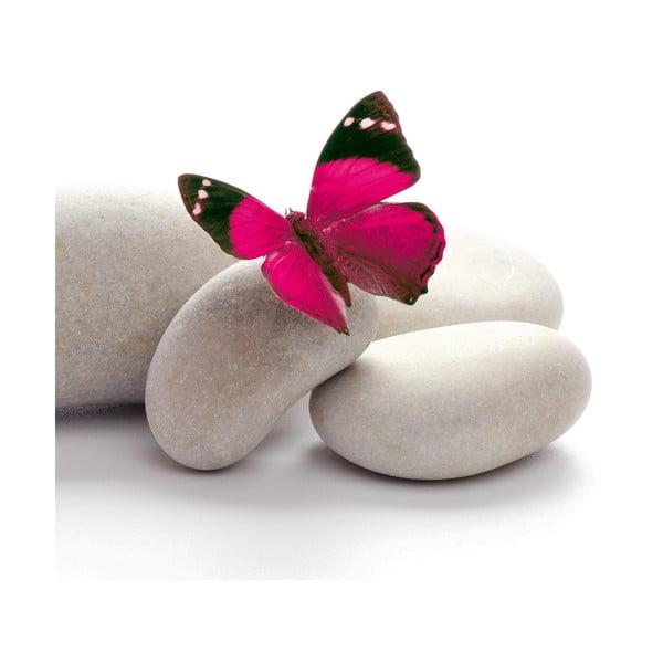 Szklany obraz Papillon, 20x20 cm