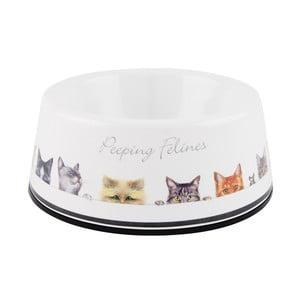 Miska dla kota Ashdene Peeping Felines, ⌀13cm