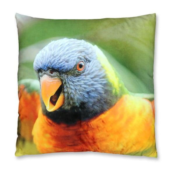 Poduszka Parrot no. 2, 45x45 cm