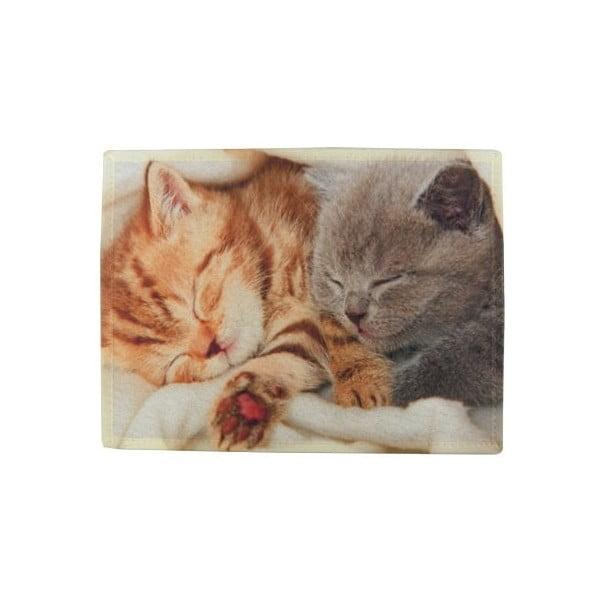 Dywanik Kittens on Blanket 75x50 cm