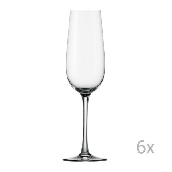 Zestaw 6 kieliszków Stölzle Lausitz Weinland Flute Champagne, 200 ml