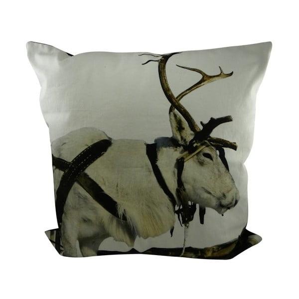 Poduszka Sepia Reindeer Working 60x60 cm