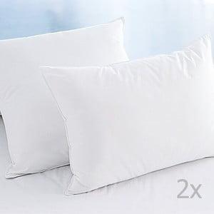 Zestaw 2 poduszek White, 50x70 cm