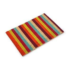 Wycieraczka Stripes, 60x40 cm
