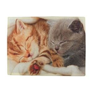 Mata stołowa Mars&More Kittens Sleeping on Blanket 40x30 cm