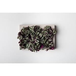 Pionowa doniczka HOH! Grigio, 38x27 cm