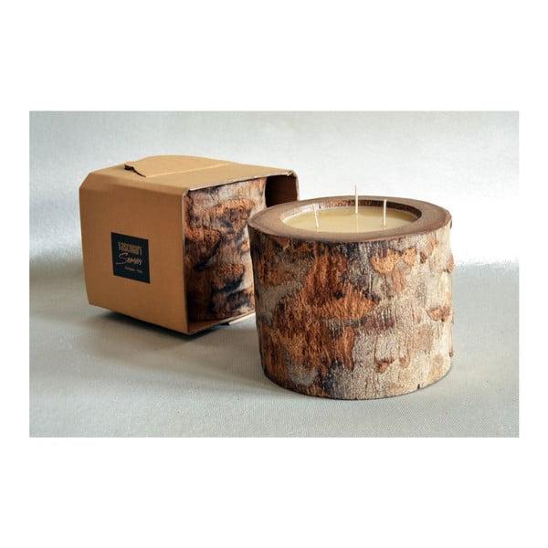 Palmowa świeczka Legno Ebony o zapachu miodu, 100 godz.