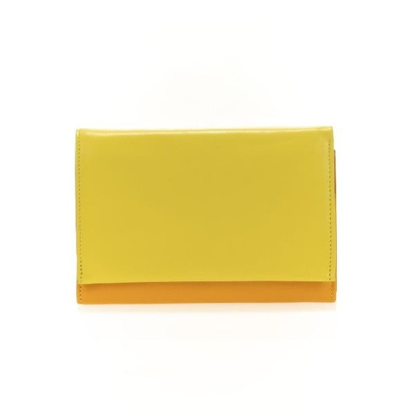 Portfel i etui na karty kredytowe Orange
