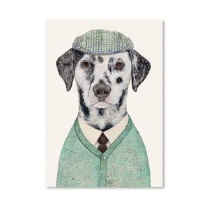"Plakat ""Dalmatian"", 30x42 cm"