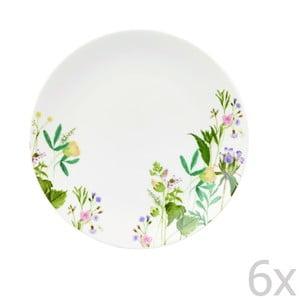 Komplet 6 talerzy Himalyan Flowers, 20 cm