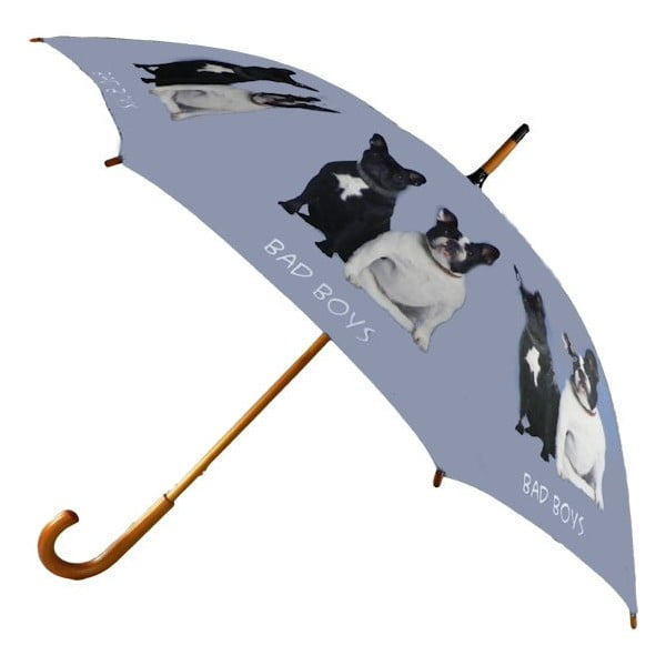Parasol French Bulldog