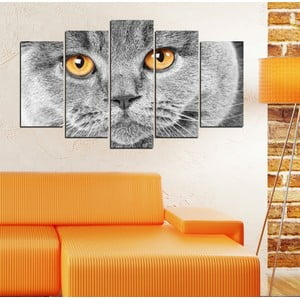 5-częściowy obraz Kocie spojrzenie