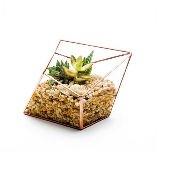 Terrarium z roślinami Diamond Terrarium, w jasnej ramce