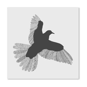 Plakat Bird Grey, 30x30 cm