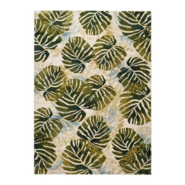 Zielony dywan Universal Tropics Multi, 200x290cm