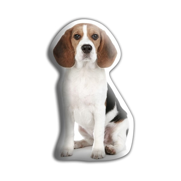 Poduszeczka Beagle
