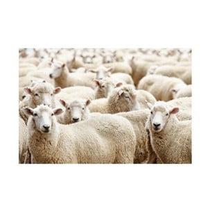 Mata stołowa Sheep 40x30 cm