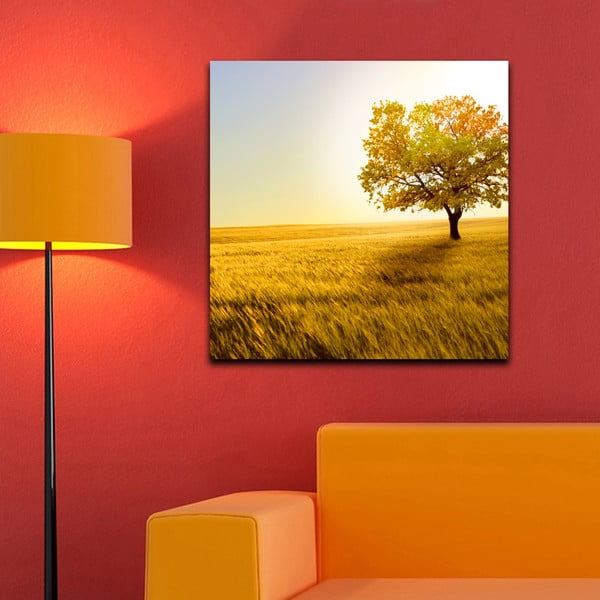 Obraz Na łące, 60x60 cm