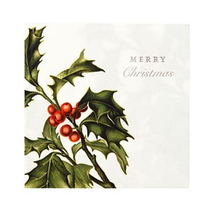 Zestaw 20 serwetek Talking Tables Merry Christmas