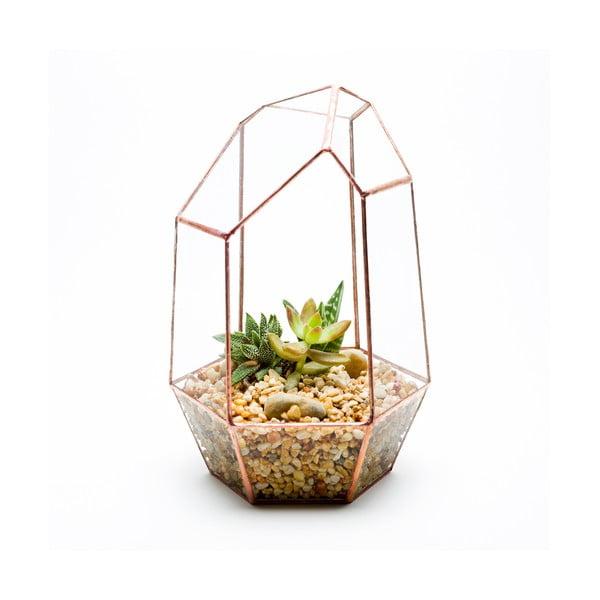 Terrarium z roślinami Gem Terrarium, w jasnej ramce