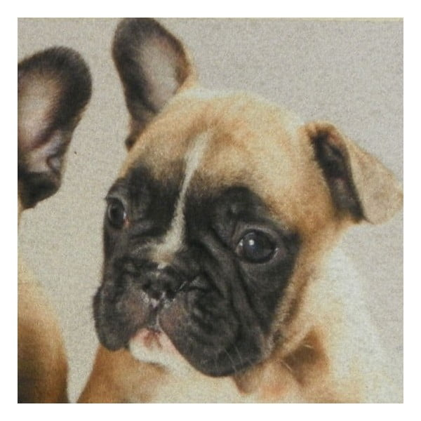 Dywanik French Bulldog Puppies 75x50 cm