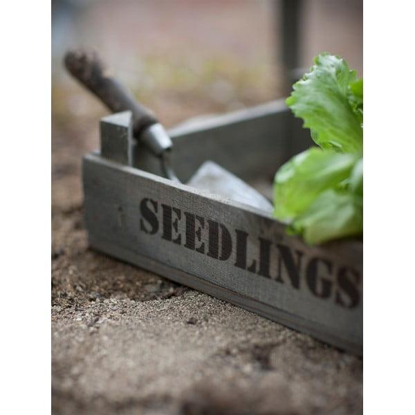 Skrzynka na sadzonki z drewna sosnowego Garden Trading Seedlings