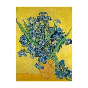 Obraz Vincenta van Gogha - Irises, 40x30 cm