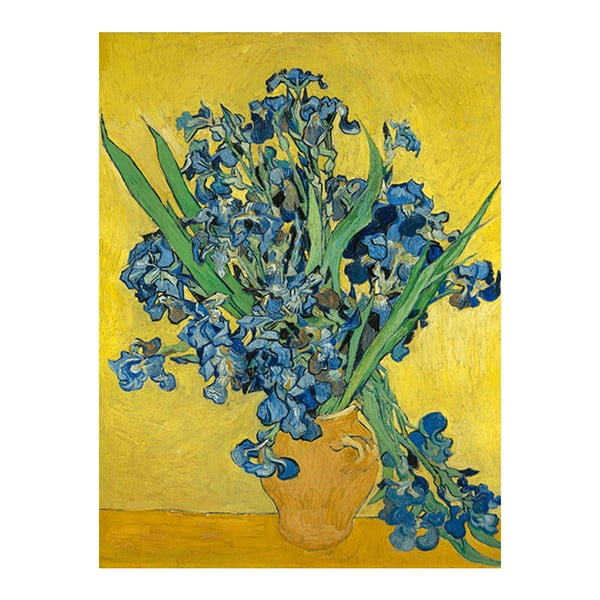 Obraz Vincenta van Gogha - Irises, 60x45 cm