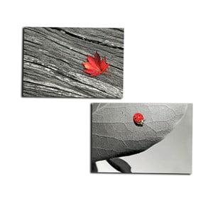 Zestaw 2 obrazów na drewnie Leave, 50x40 cm