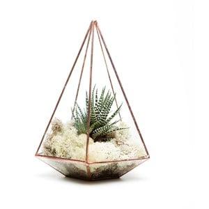 Terrarium z roślinami Jewel Terrarium, w jasnej ramce