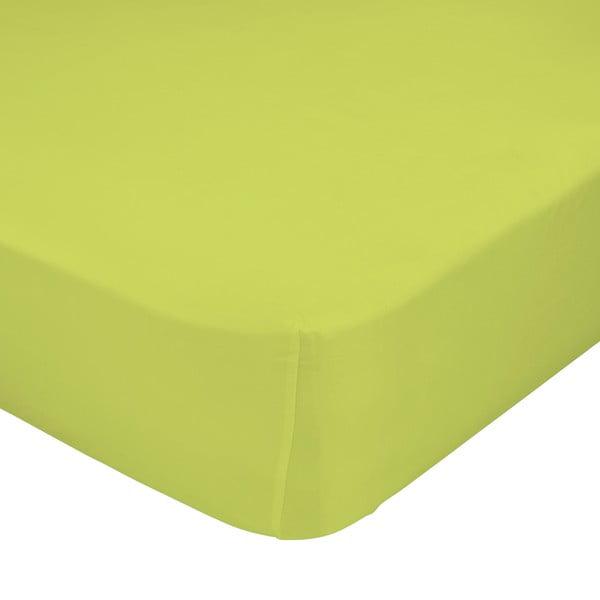 Prześcieradło elastyczne Baleno Green, 60x120 cm